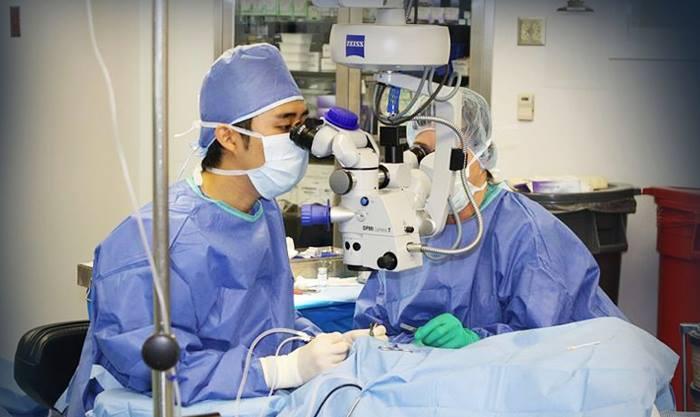 5月の眼科診療日について