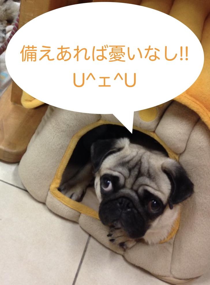 〜台風10号が接近しています!〜