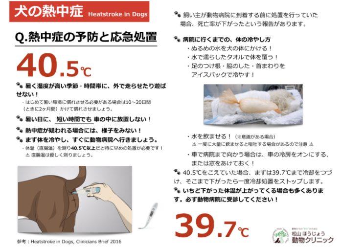 熱中症から命を守ろう!